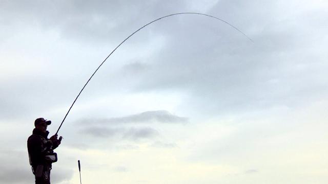 vol.460